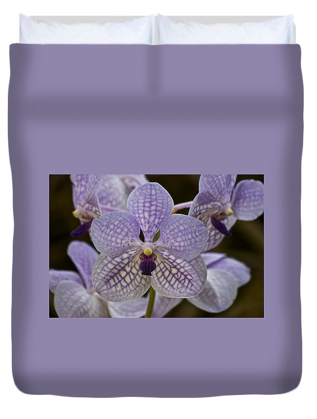 Purple Orchids Duvet Cover featuring the photograph Purple Orchids by Michael Peychich