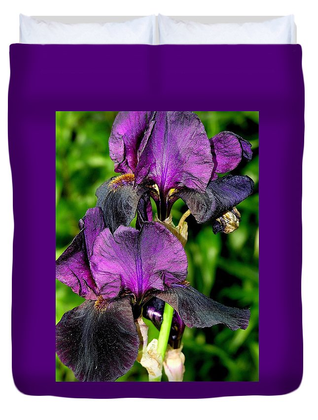 Flower Duvet Cover featuring the photograph Purple Passion by Karen Dickinson