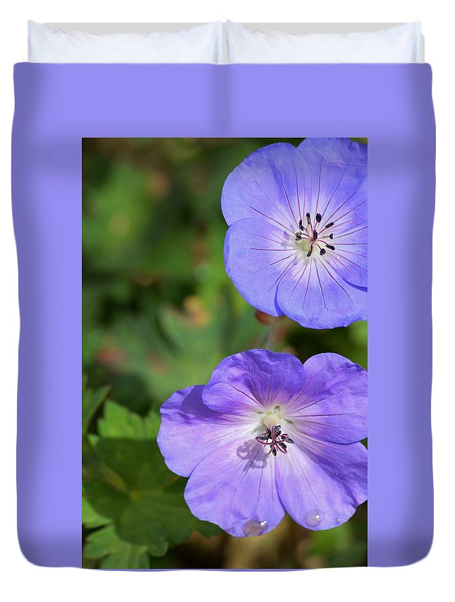 Raindrops On Purple Duvet Cover featuring the photograph Raindrops On Purple by Warren Thompson
