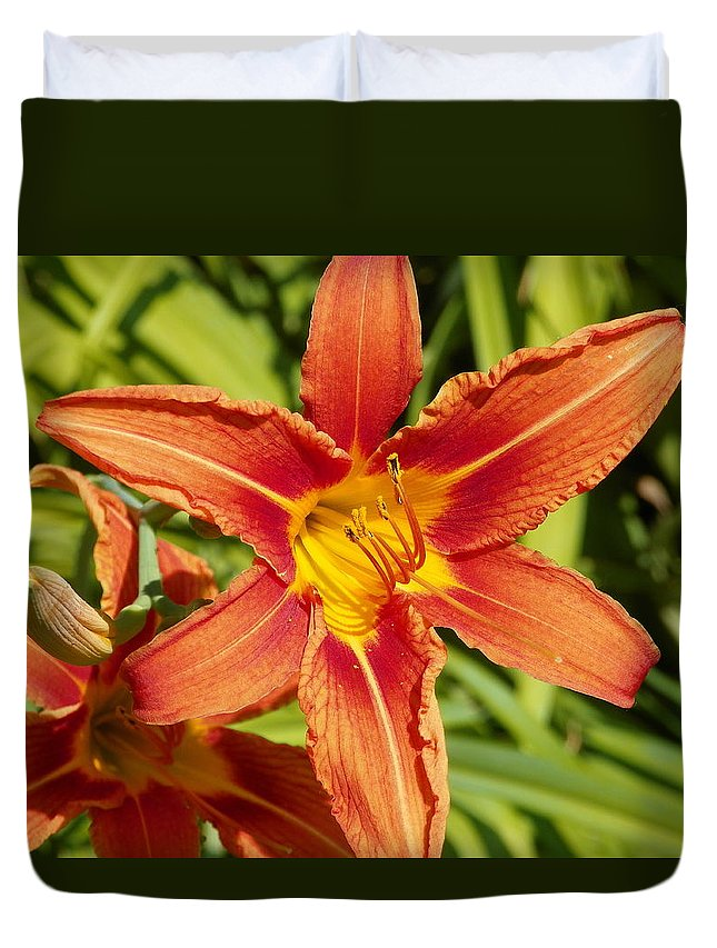 Red Lily Duvet Cover featuring the photograph Red Lily by Vineta Marinovic