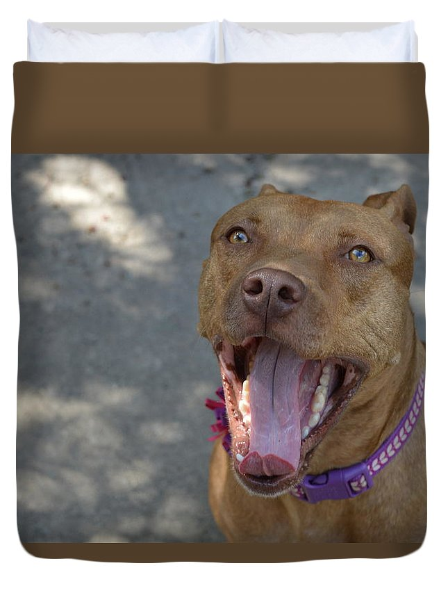 Rednose Duvet Cover featuring the photograph Red Nose Pitty by Nadia