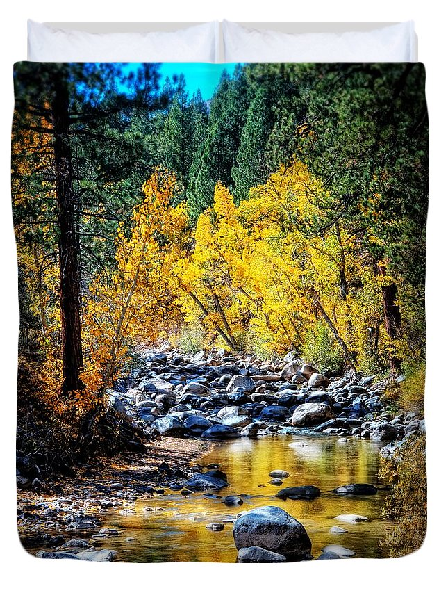Gold Duvet Cover featuring the photograph Reflections Of Gold by Lynn Bauer