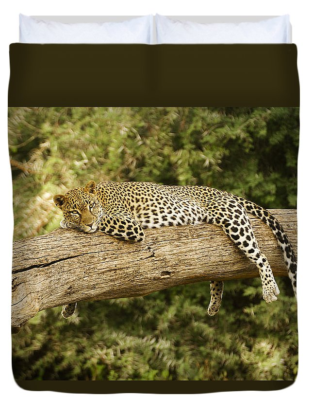 Africa Duvet Cover featuring the photograph Relaxation by Michele Burgess