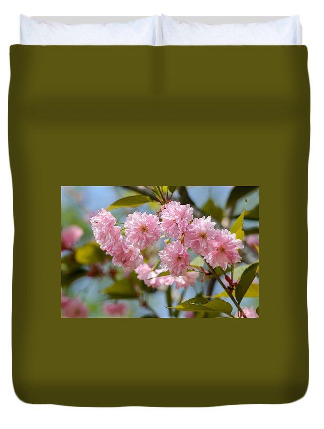 Oriental Duvet Cover featuring the photograph Sakura Flowers by Alain De Maximy