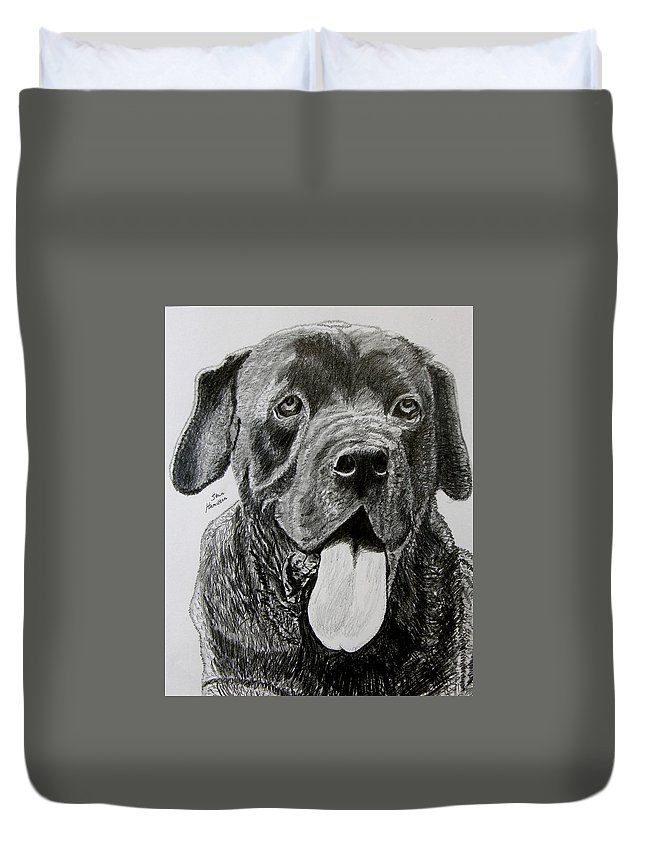 Dog Portrait Duvet Cover featuring the drawing Sampson by Stan Hamilton