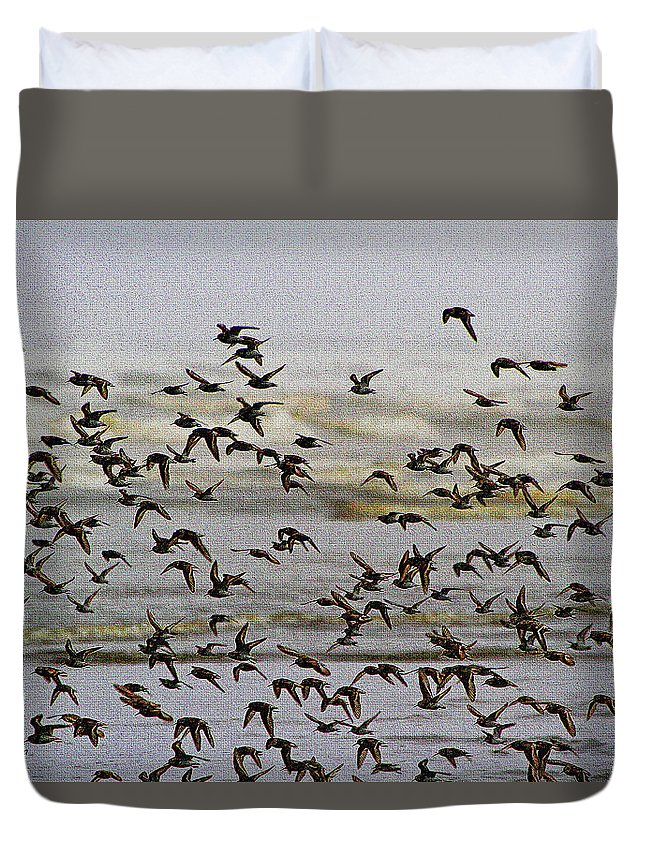Sand Pipers In Flight Duvet Cover featuring the digital art Sand Pipers In Flight by Tom Janca