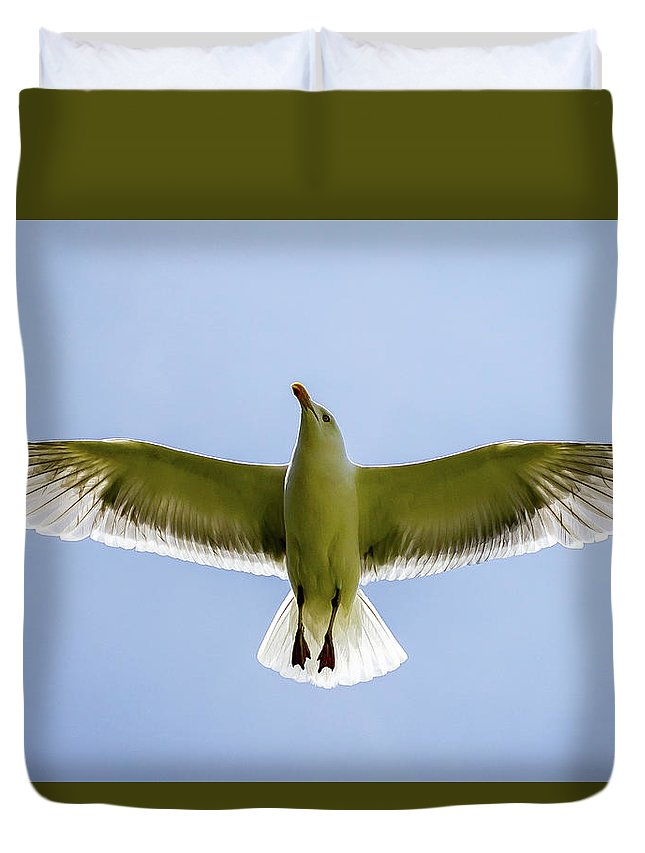 Seagull Duvet Cover featuring the photograph Seagull by Thomas Ozga