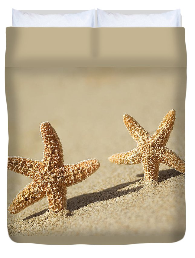 Afternoon Duvet Cover featuring the photograph Seastars On Beach by Mary Van de Ven - Printscapes