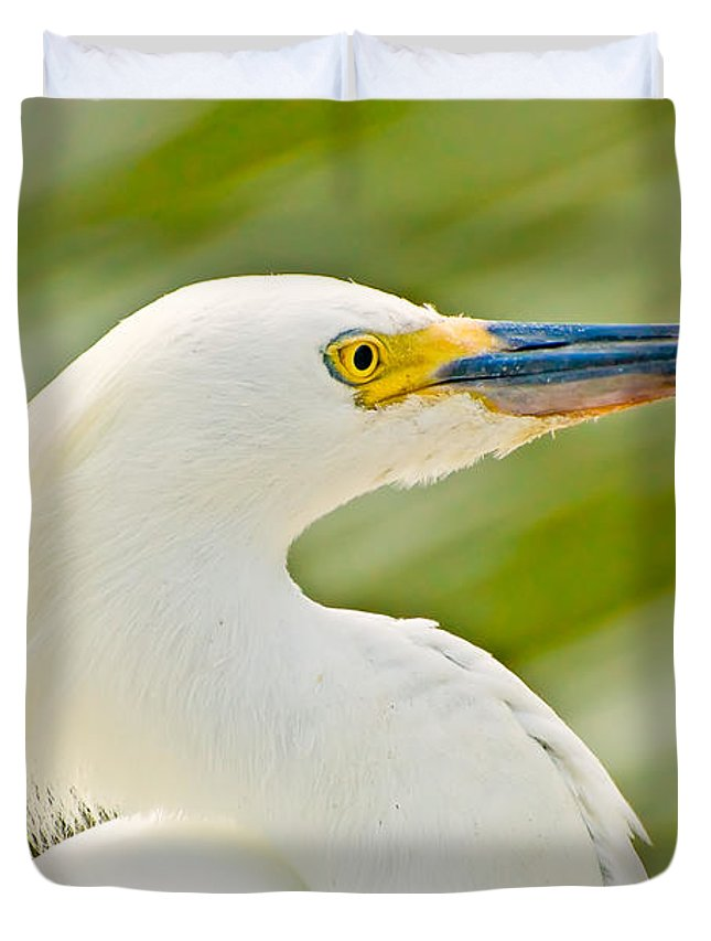 Animal Duvet Cover featuring the photograph Snowy Egret by Rich Leighton