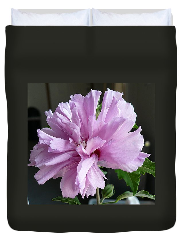 Phoyography.hibiscus Flower Floral Bloom Bush Pink Duvet Cover featuring the photograph So Pink by Karin Dawn Kelshall- Best