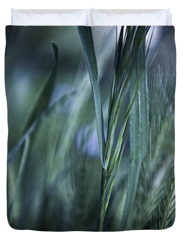 Landscape Duvet Cover featuring the photograph Spring Grass Emerging by Sheryl Karas