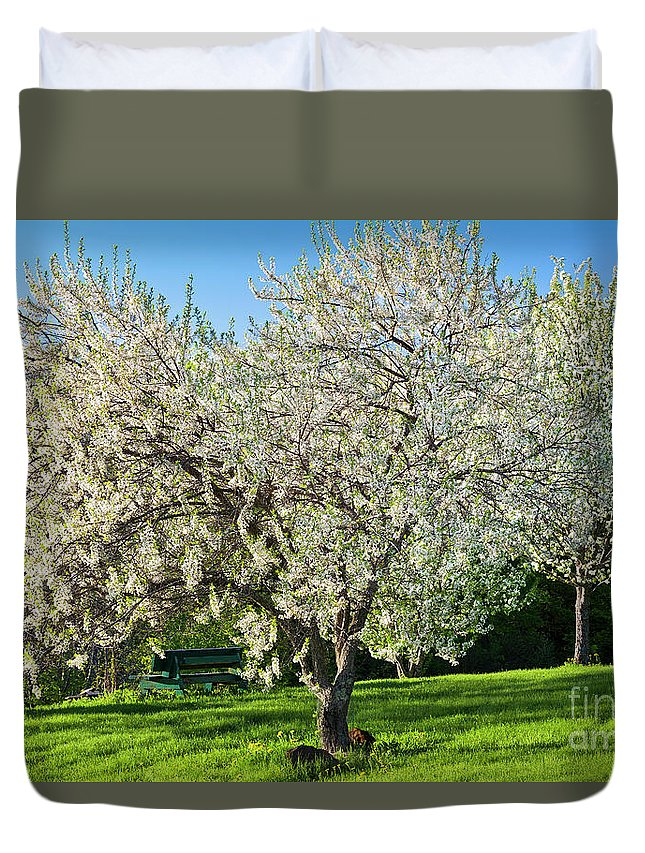 Spring Duvet Cover featuring the photograph Springtime Blossoms by Alan L Graham