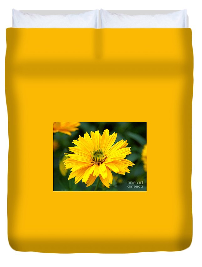 Macro Duvet Cover featuring the photograph Sun Flower by Joe Ng