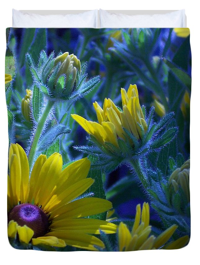 Sun Daisy Duvet Cover featuring the photograph Sun Glory Series by Marika Evanson
