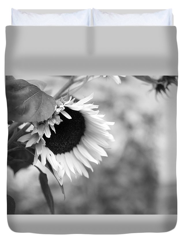Sunflower Duvet Cover featuring the photograph Sunflower Garden by Miguel Winterpacht
