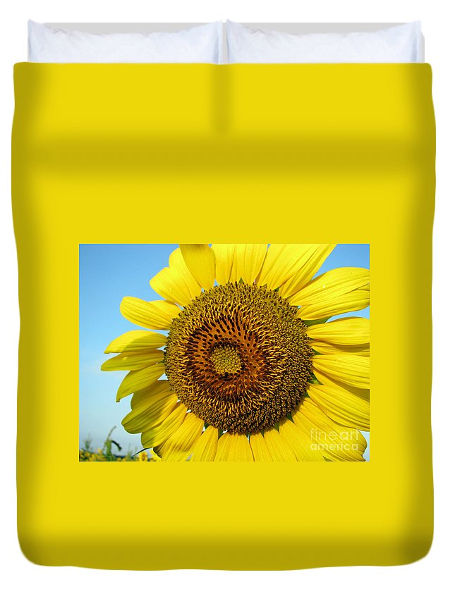 Sunflower Duvet Cover featuring the photograph Sunflower Series by Amanda Barcon