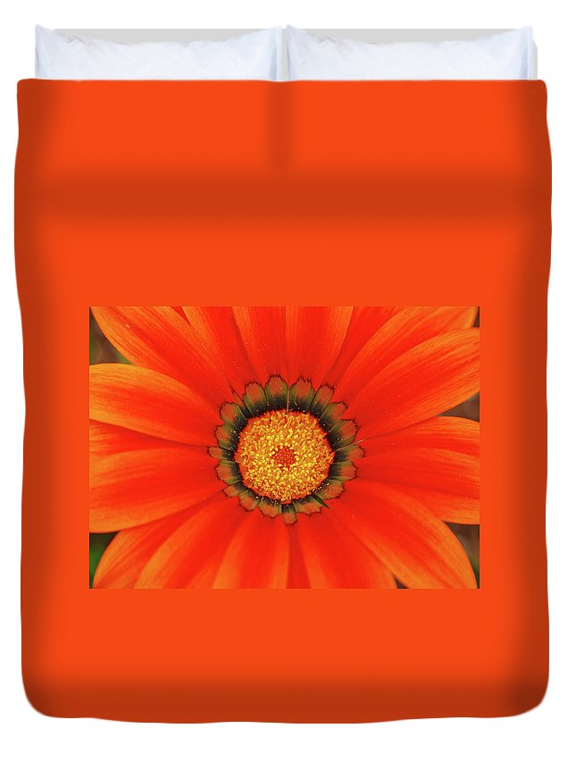 Daisy Duvet Cover featuring the photograph The Beauty Of Orange by Lori Tambakis