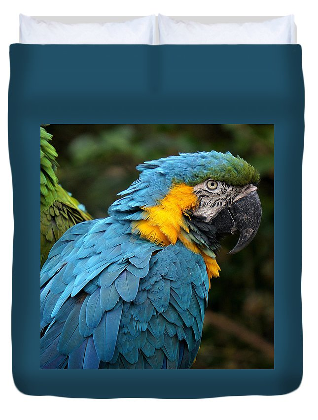 Ann Keisling Duvet Cover featuring the photograph The Blue by Ann Keisling