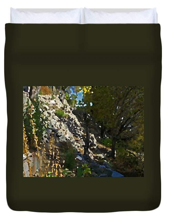 Abstract Duvet Cover featuring the digital art The Hidden Garden by Lenore Senior