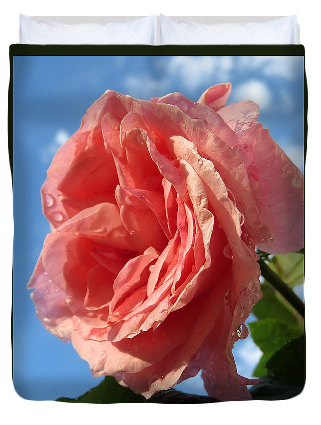 Rose Duvet Cover featuring the photograph The Queen by Phyllis Beiser