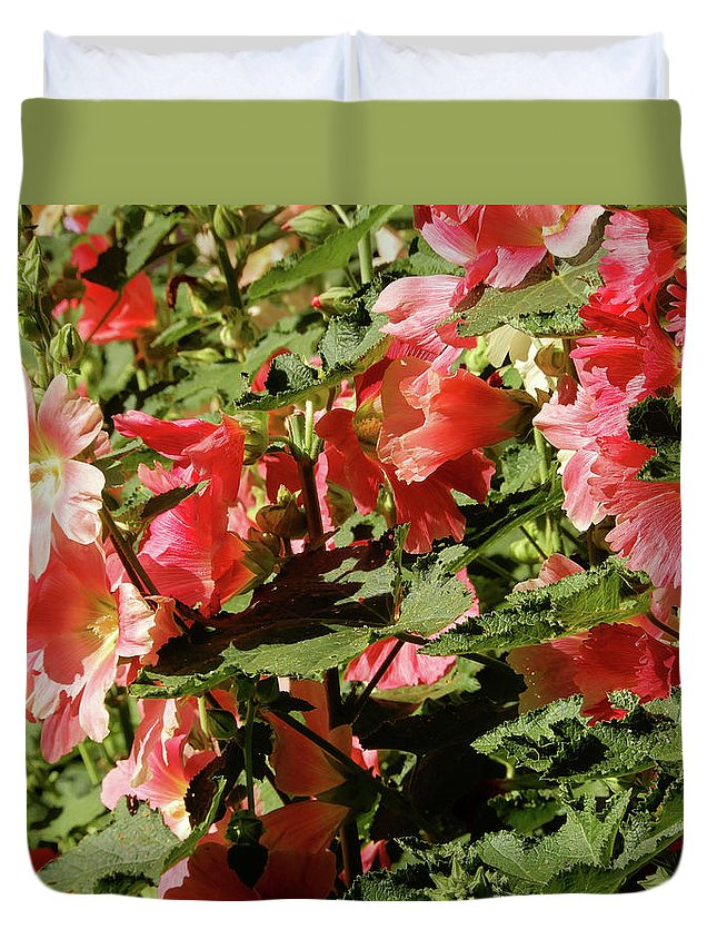Poppy Duvet Cover featuring the photograph The Reds by Tina M Wenger