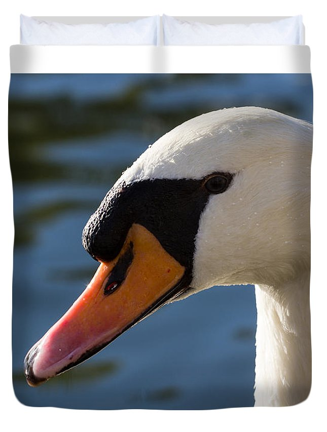 Swan Duvet Cover featuring the photograph The Watchful Swan by David Pyatt
