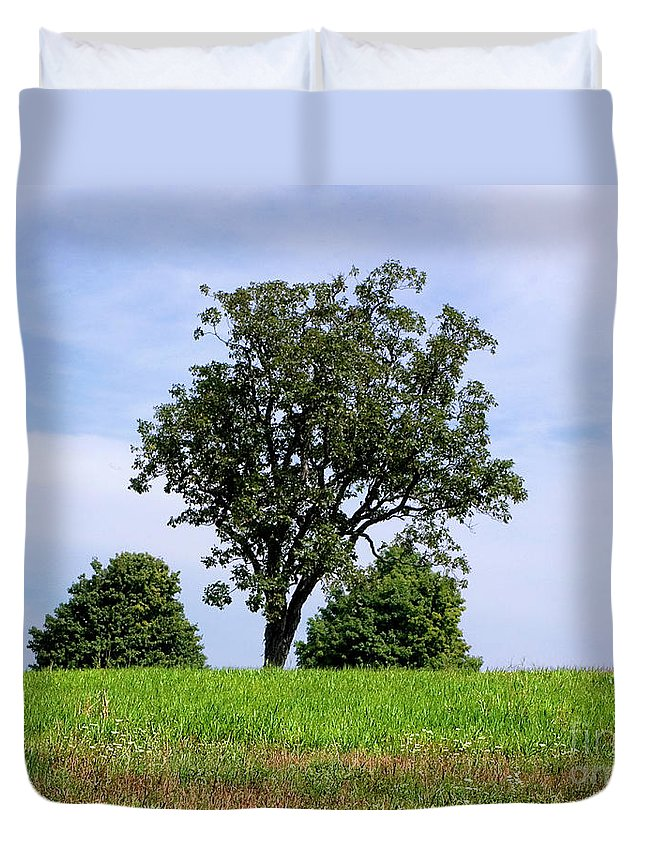 Tree Duvet Cover featuring the photograph Three Tree Hill by Madeline Ellis