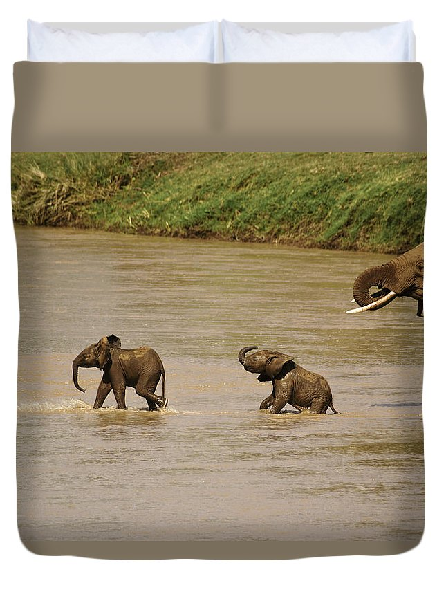 Africa Duvet Cover featuring the photograph Tiny Elephants by Michele Burgess