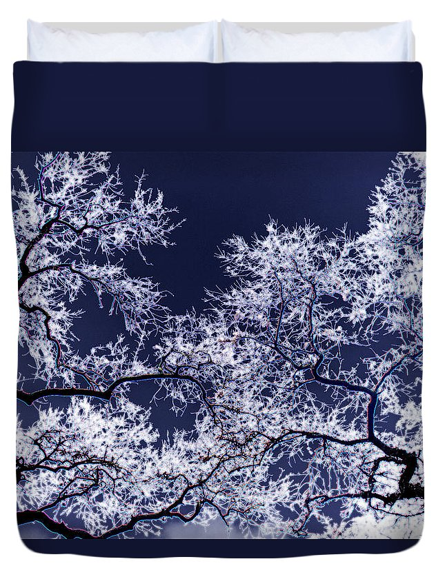 Tree Duvet Cover featuring the photograph Tree Fantasy 17 by Lee Santa