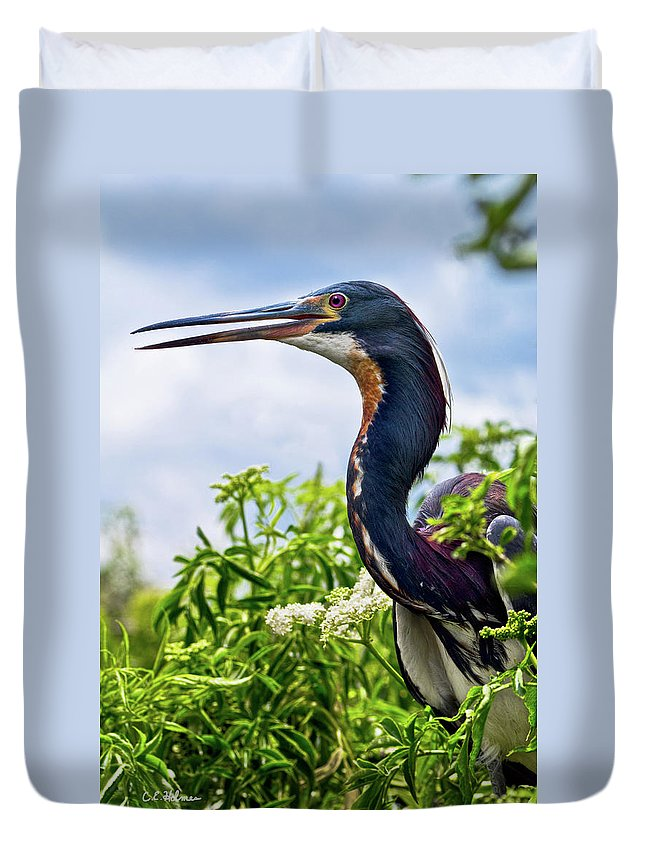 Bird Duvet Cover featuring the photograph Tri-colored Heron by Christopher Holmes