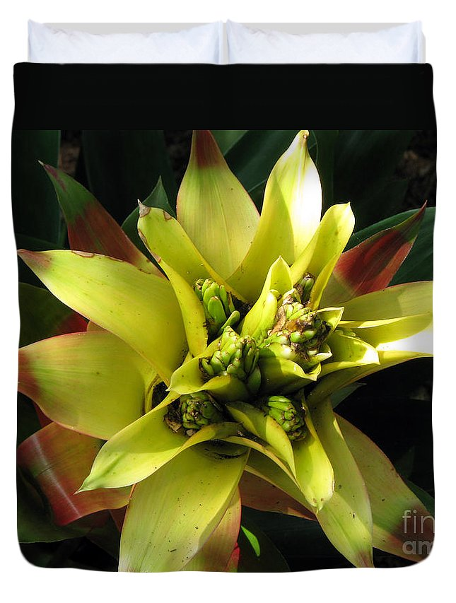 Tropical Duvet Cover featuring the photograph Tropical by Amanda Barcon