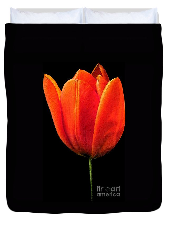 Tulips Duvet Cover featuring the photograph Tulip by Amanda Barcon