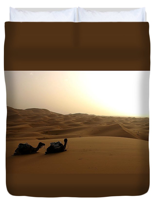 Camel Duvet Cover featuring the photograph Two Camels At Sunset In The Desert by Ralph A Ledergerber-Photography