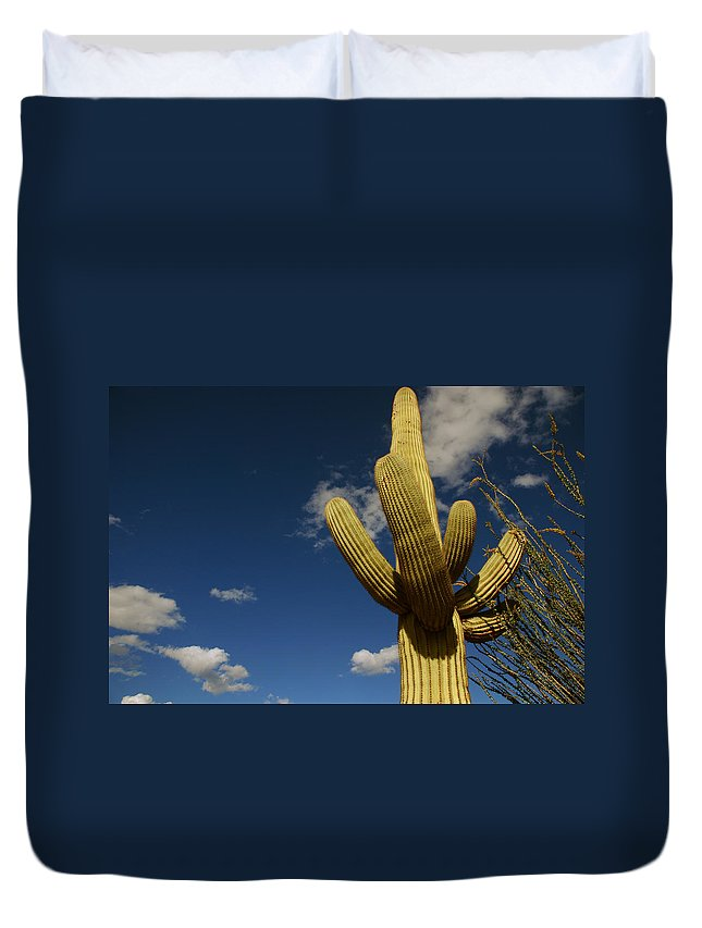 Saguaro Duvet Cover featuring the photograph Up To The Sky by Susanne Van Hulst