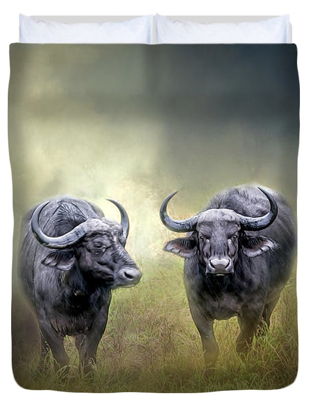 Animal Duvet Cover featuring the photograph Water Buffalo by Maria Coulson