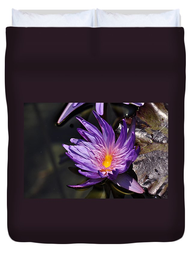 Clay Duvet Cover featuring the photograph Water Floral by Clayton Bruster