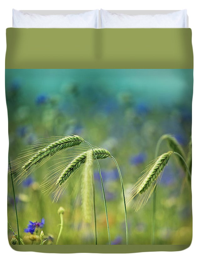 Wheat Duvet Cover featuring the photograph Wheat And Corn Flowers by Nailia Schwarz