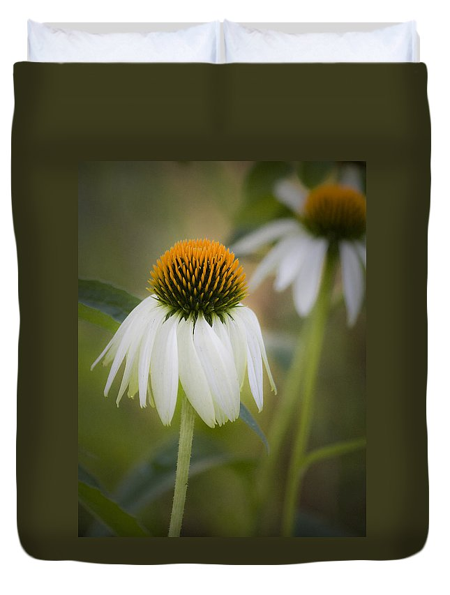 Coneflower Duvet Cover featuring the photograph White Coneflower by Teresa Mucha