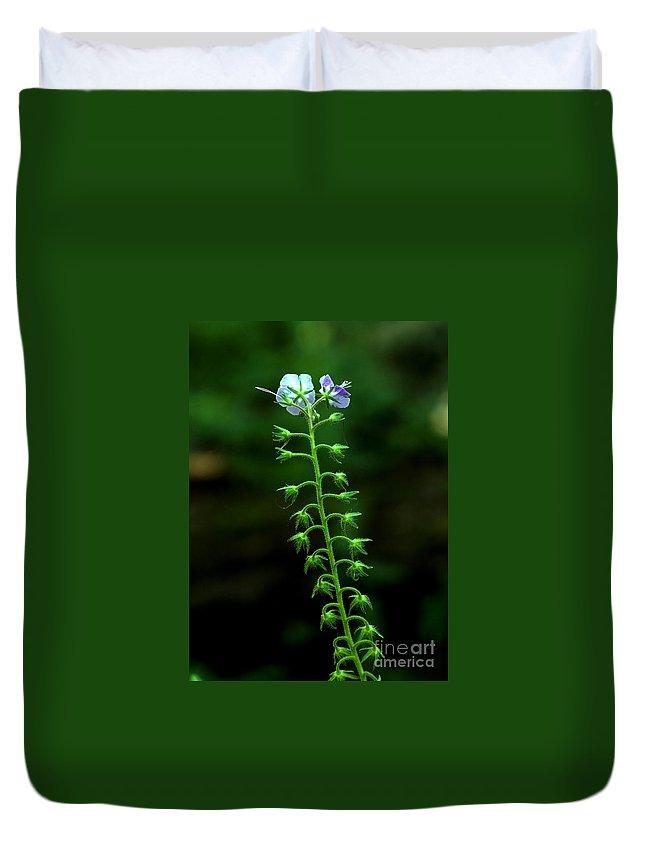 Flower Duvet Cover featuring the photograph Wildflower by Bernd Billmayer