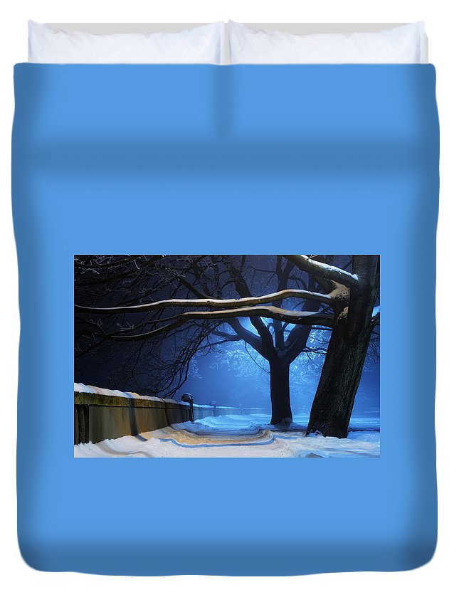 Winter Duvet Cover featuring the digital art Winter by Zia Low