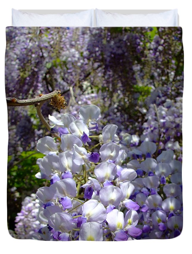 Wisteria Duvet Cover featuring the photograph Wisteria Cascading by Everett Bowers