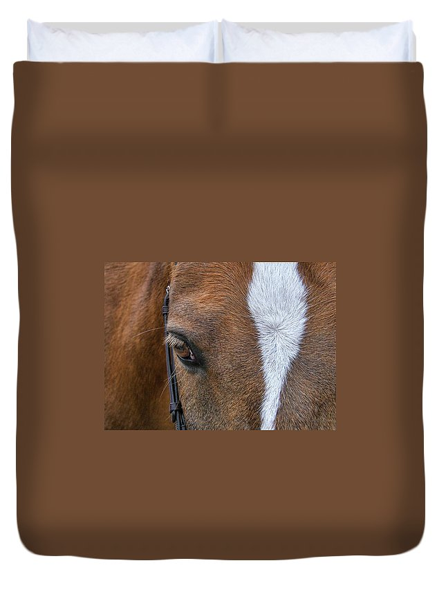Horse Duvet Cover featuring the photograph Wonder Pony by JAMART Photography