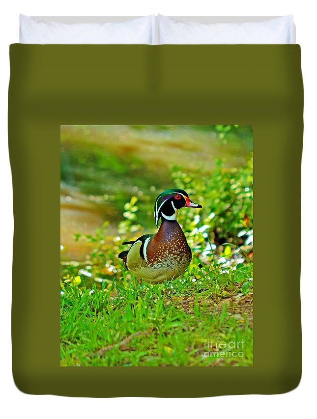 Woody Duvet Cover featuring the photograph Wood Duck by Kevin Pugh