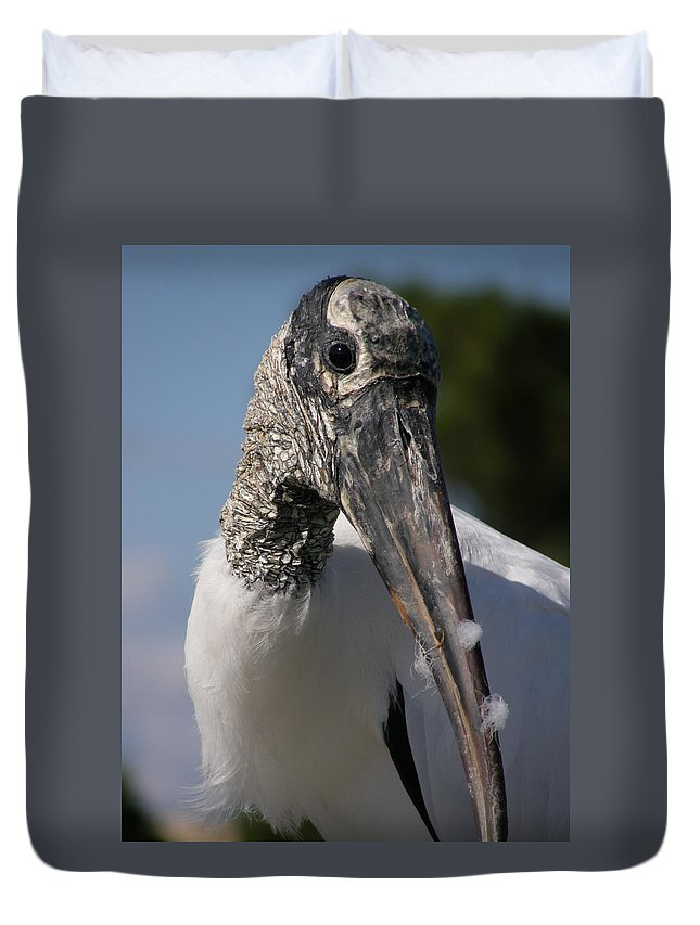 Bird Duvet Cover featuring the photograph Wood Stork by Kimberly Mohlenhoff