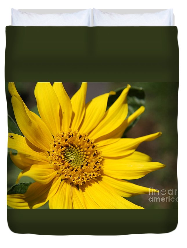 Sunflower Duvet Cover featuring the photograph Yellow Sunflower by Christiane Schulze Art And Photography