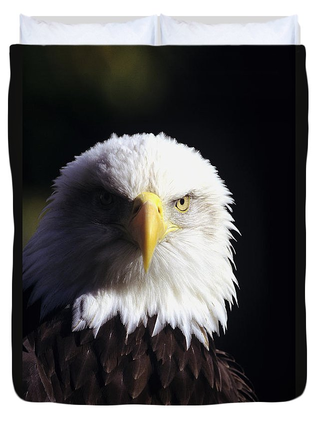 American Duvet Cover featuring the photograph Bald Eagle by John Hyde - Printscapes