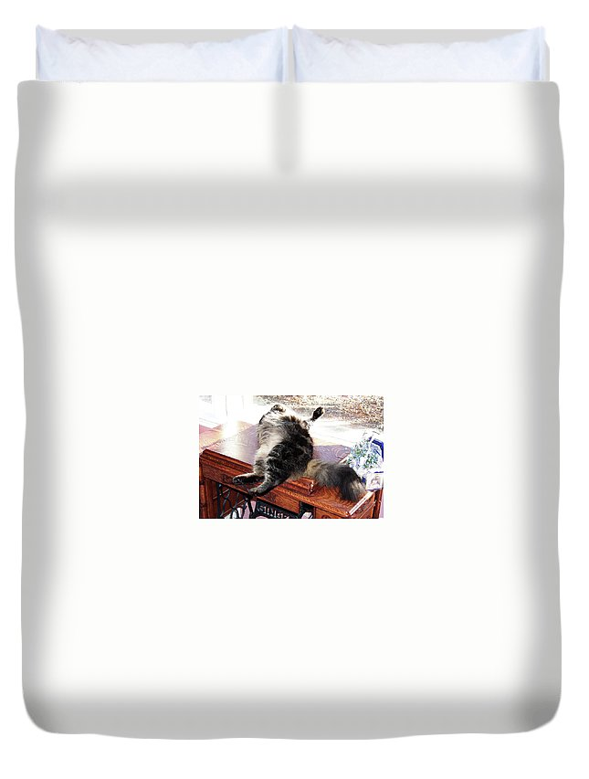Maine Coon Duvet Cover featuring the photograph Maine Coon Cat by Michael Munster