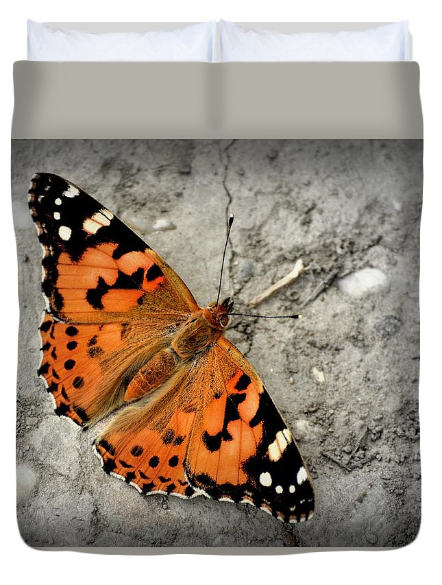 Butterfly Duvet Cover featuring the photograph Butterfly by FL collection