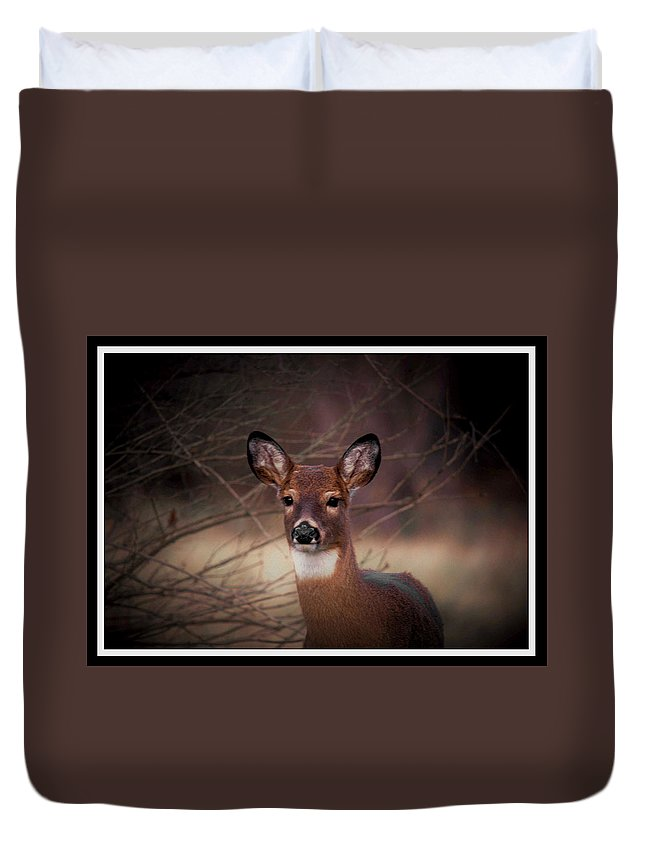 Deer Duvet Cover featuring the photograph 112601-30  Portrait Of A Lady by Mike Davis