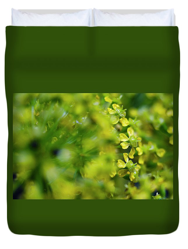 Real Duvet Cover featuring the photograph Royal Botanical Garden Of Madrid by Pablo Lopez